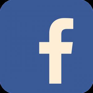 facebook logo nailsessential